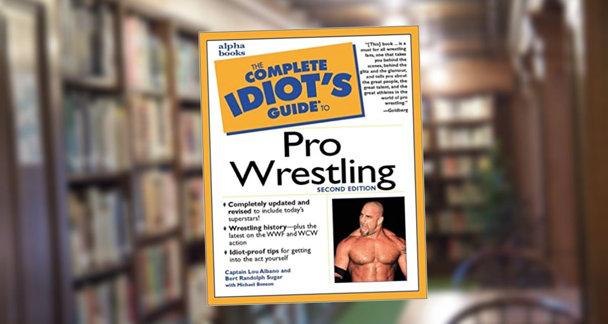 Idiot's Guide pretty good
