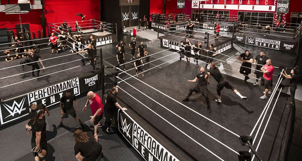 New batch of WWE recruits features familiar names