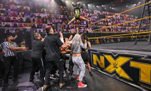 NXT: Second, lesser Ladder Match precedes WarGames
