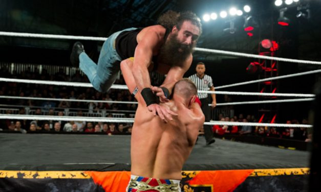 Brodie Lee / Luke Harper photo gallery