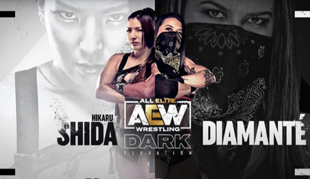 AEW Dark and Elevation: The Main Events